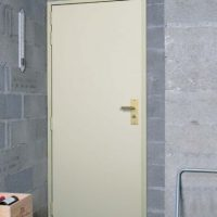 Porte de cave blindée FICHET